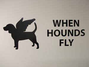 When Hounds Fly