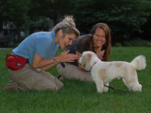 A Dog Trainer's Guide to Best Practices