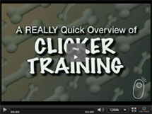 Introduction to Clicker Training