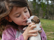 Are Puppies and First Graders Alike?