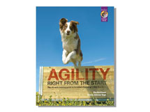 Excerpts from Agility Right from the Start