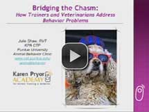 Bridging the Chasm: How Trainers & Vets Address Behavior Problems