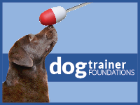 Dog Trainer Foundations