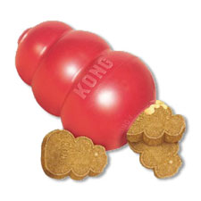 Kongs are a great way to keep your dog busy and happy.