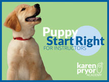 Puppy Start Right for Instructors Course