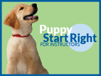 Puppy Start Right for Instructors