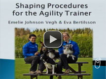 Shaping Procedures for the Agility Trainer