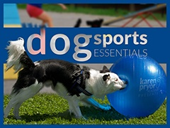 Dog Sports Essentials
