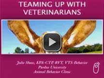 Behavior Modification: Teaming up with vets