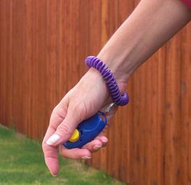 wrist coil clicker