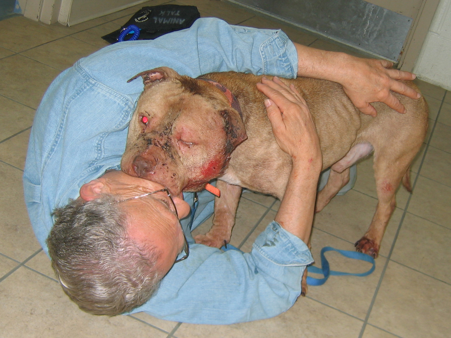 """Vicious Dogs And this """"vicious"""" dog had"""